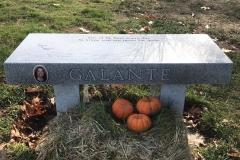 Galante-Bench-Set-9581382e-7f1e-4a18-8bfa-1ba94e9514c3