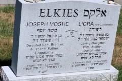 Elkies-for-web-site
