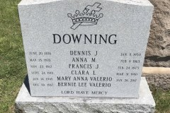 Gray-Granite-Steeled-Front-Downing